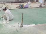 高雄油漆(07)588-8888  頂樓防水,pu施工
